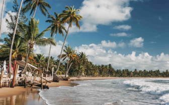 Beach of Bahia