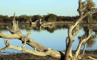Lake in Makgadikgadi