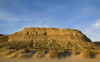 Desert in Peninsula Valdes