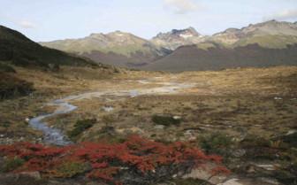 Landscape across Tierra del Fuego