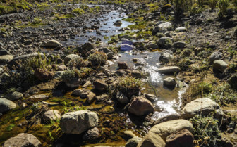Stream trickling through the rocks