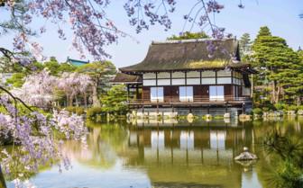 Floating Temple with Cherry Blossom