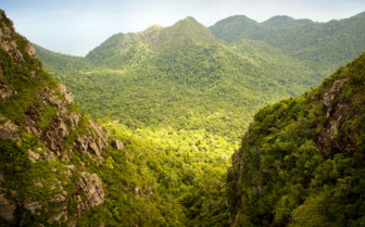 Verdant Mountains in Langkawi