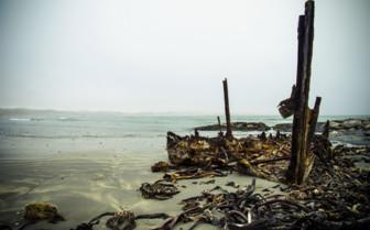 Shipwreck remains at Skeleton Coast