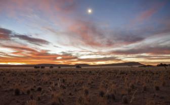Dusk in the Namib desert