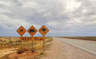 Nullabar Plain, Australia
