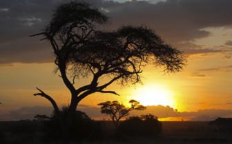Southern Kenya scenery