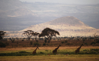 Chyulu Hills views