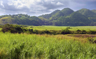 Jamaica inland mountains and fields