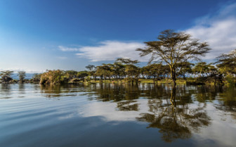 Rift Valley reflection