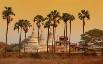 Minochantha Stupa and trees
