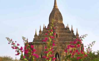 Bagan pagoda with pink flowers