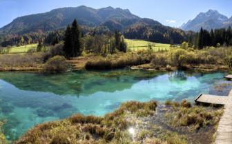 Zelenci Lake