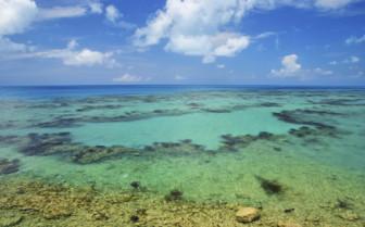 Tropical sea at Bermuda