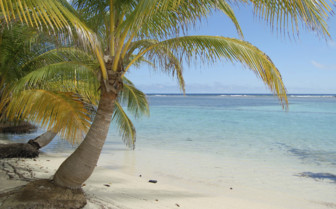 Ambergis Caye Belize Beach