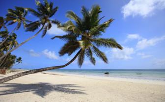 Zanzibar Beach View