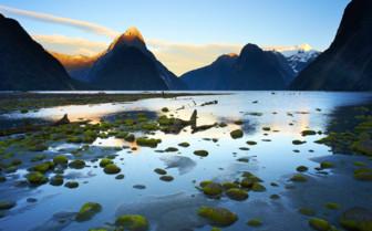 Milford Sound Dawn