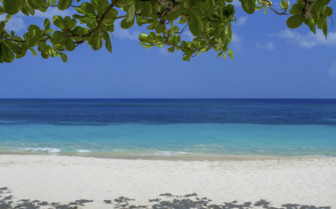 Grenada Beach with Turquoise Waters