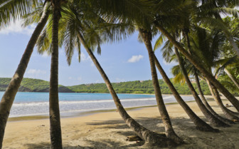 La Sagesse Beach in Grenada