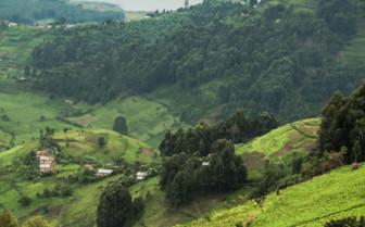 Lake Bunyonyi in Rwanda