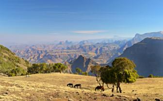 Simien Mountains in Ethiopia