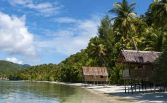 Bamboo Huts in Papua Nipa