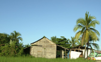 Hut in panama