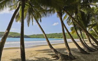 Sagesse Beach in Grenada