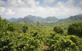 Honduras Landscape
