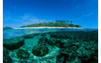 Picture of beautiful coral and islands in Beqa Lagoon