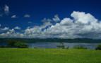Picture of Peninsula Papagayo Greenery