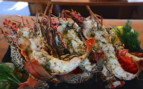 Picture of lobster on the Silolona