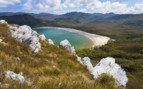 Beautiful beaches in Tasmania