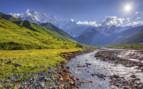 Alpine meadows tetnuldi glacier