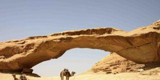 Camel under a desert archway